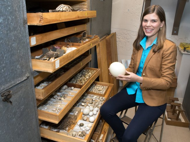 Stoddard in bird collection